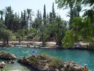 Hamat Gader, Golanhoogten, Israël, bronnen, zwembad, krokodillen, alligators, resort