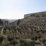 Kidrondal Bijbelse bezienswaardigheden, vakantie in Israël