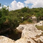 Netanya natuur, vakantie in Israël